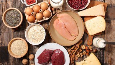 تصویر از مهم ترین منابع پروتئین کدامند؟