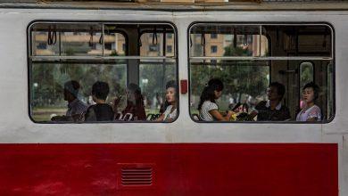 تصویر از مجموعه تصاویر طارق زیدی، عکاس