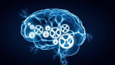 تصویر از راه های تقویت حافظه و هوش؛ 14 روش عالی برای تقویت حافظه