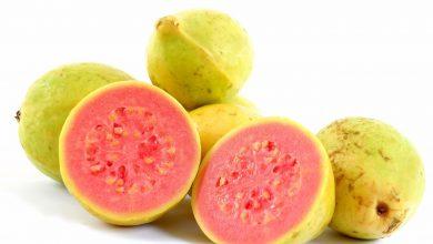 تصویر از گواوا (زیتون محلی)؛ ارزش غذایی گواوا؛ خواص دارویی گواوا