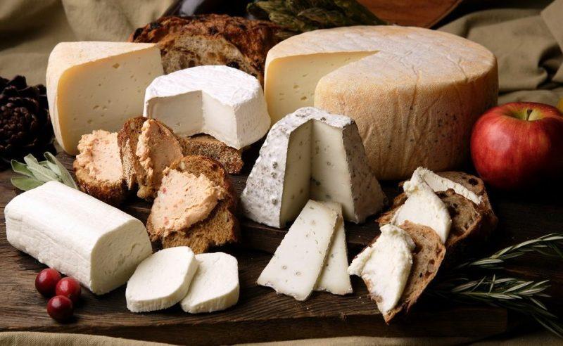 پنیر ها