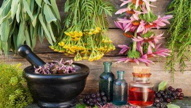 درمان زود انزالی در طب سنتی