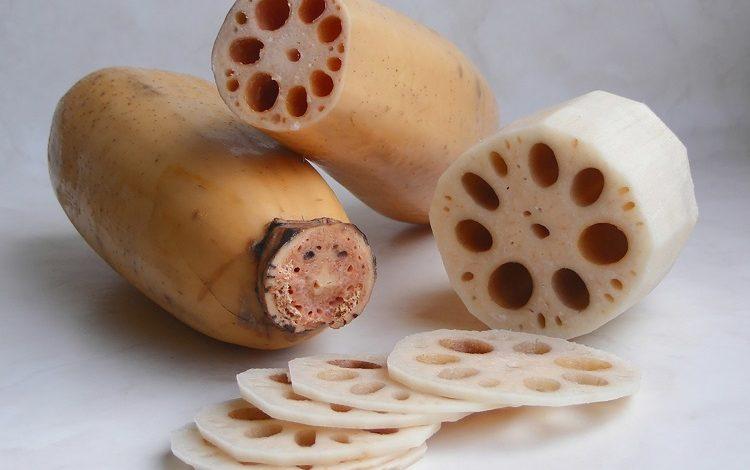 ریشه نیلوفر آبی (لوتوس)
