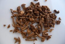 تصویر از سنبل الطیب؛ خواص و عوارض جانبی احتمالی آن بر سلامتی