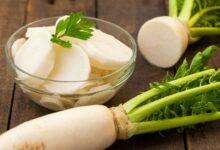 تصویر از خواص دایکون یا ترب سفید؛ چگونگی طبخ + ارزش غذایی