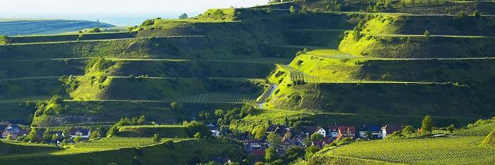تپههای Kaiserstuhl
