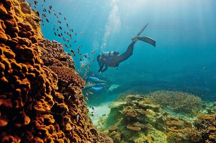 Barrier Reef در کشور استرالیا