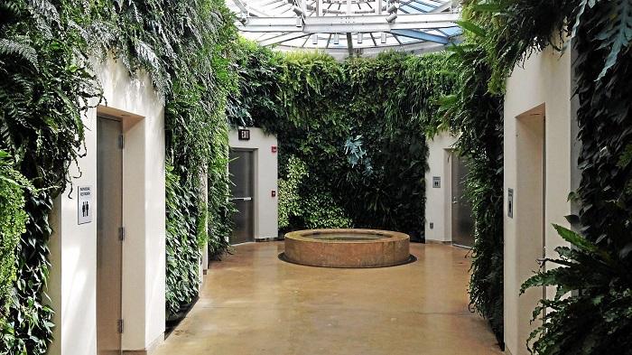 دیوار زندگی توالتها: باغهای Longwood، پنسیلوانیا