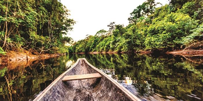 پارک ملی مادیدی (Madidi)