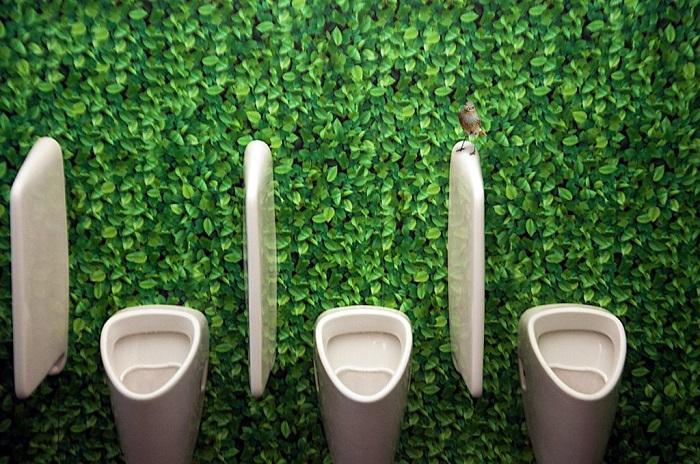 توالت فرنگی قلعه شنبرون، وین، اتریش
