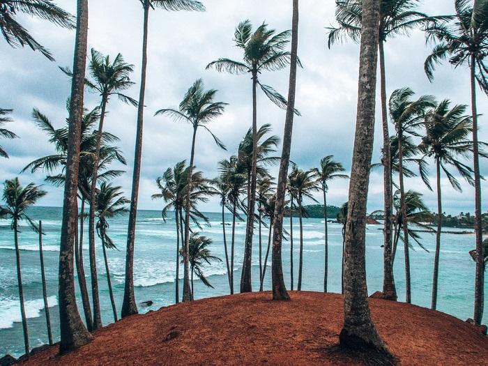میریسا (Mirissa) در کشور سریلانکا