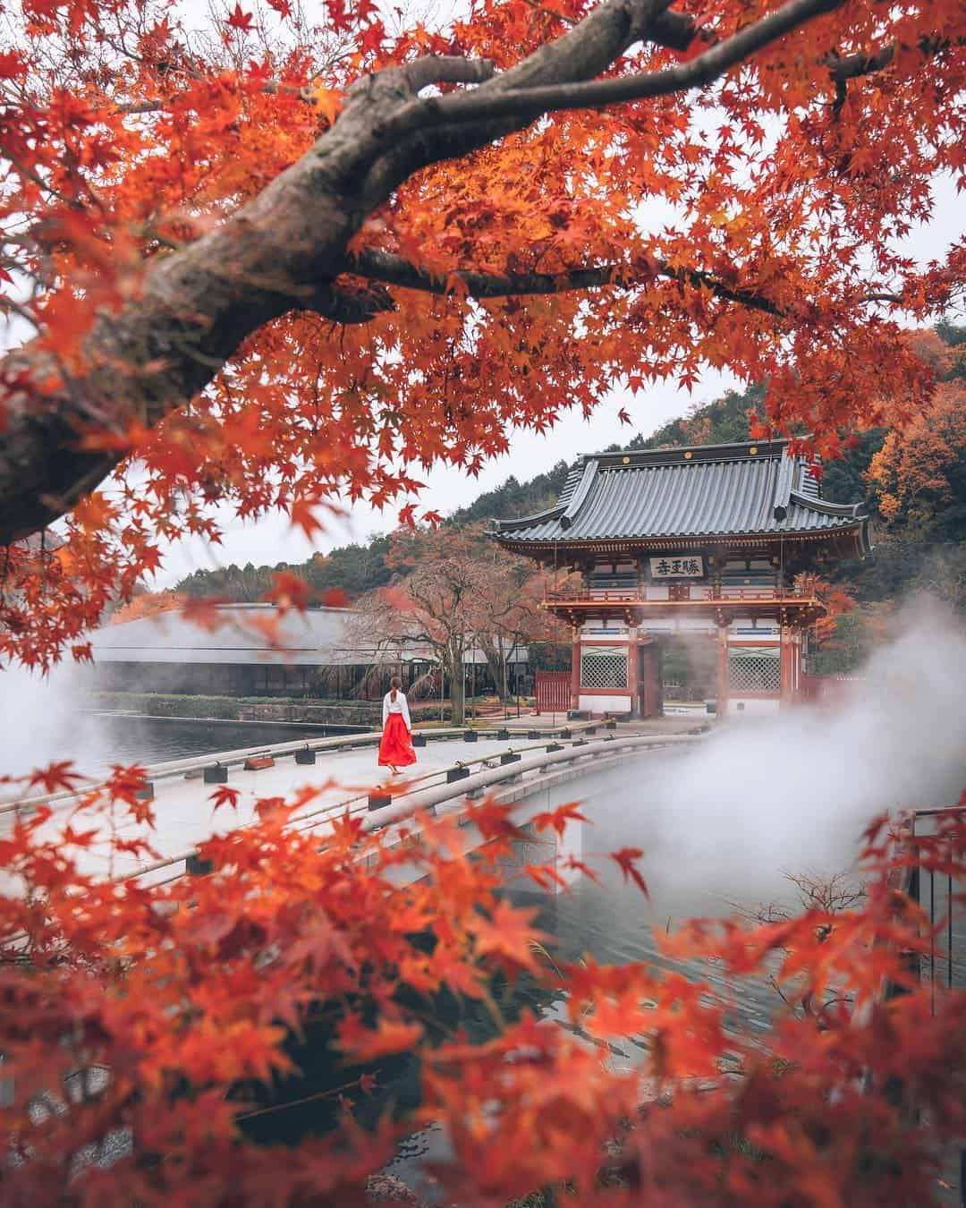 عکس های پاییز توکیو در ژاپن