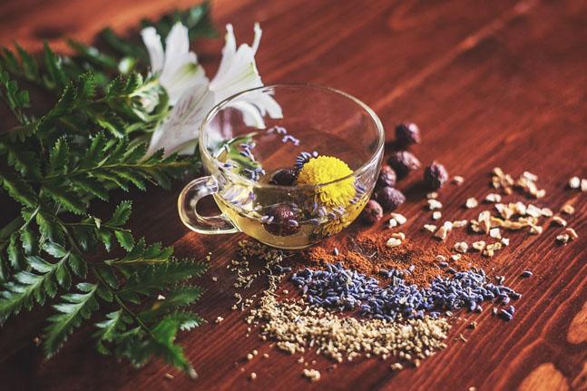 گیاهان دارویی خنک کننده بدن
