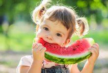 رژیم غذایی مناسب برای فصل تابستان